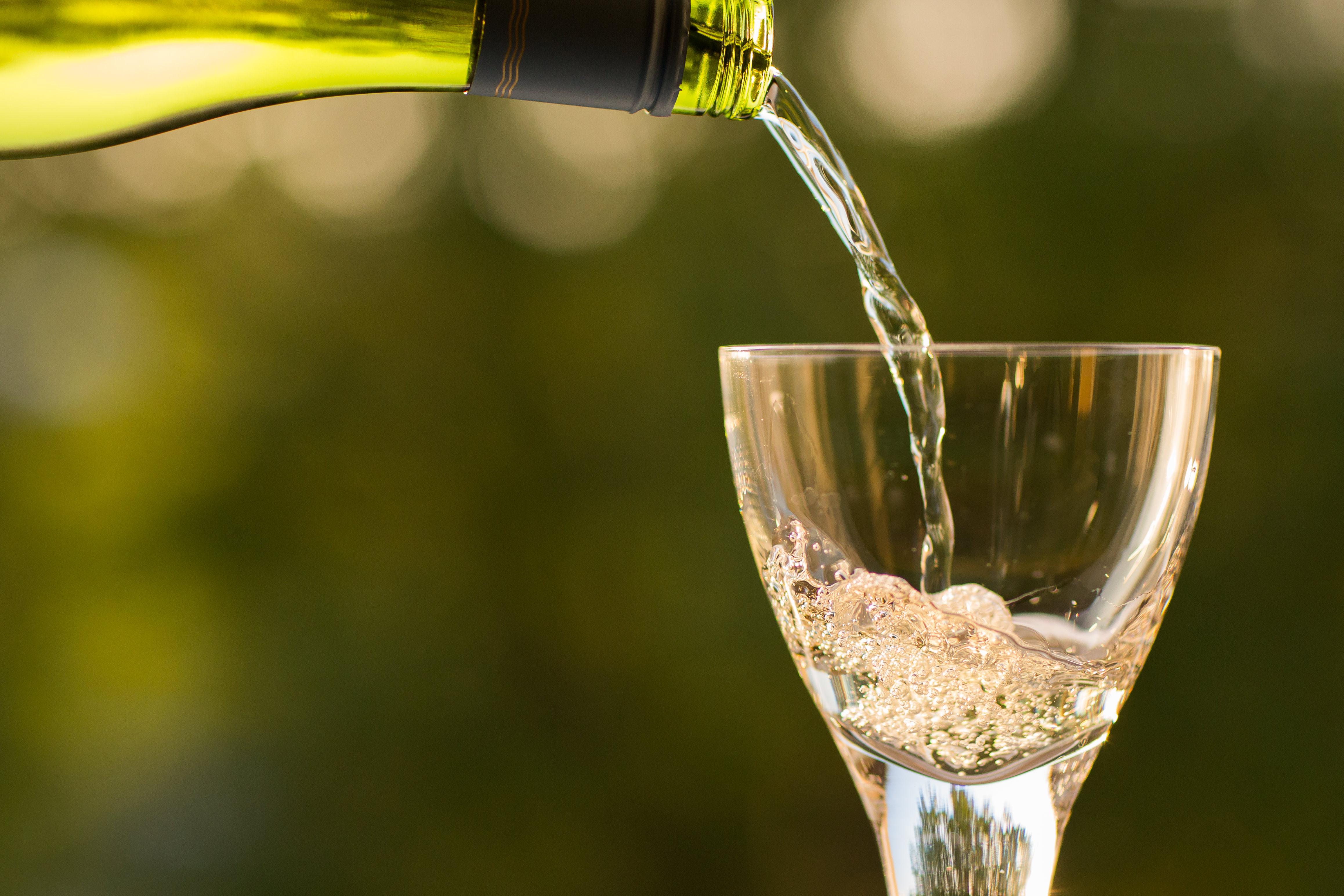 Weinprobe Zonta
